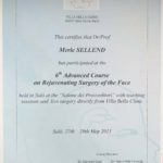 Rejuvenating Surgery of the Face 2011